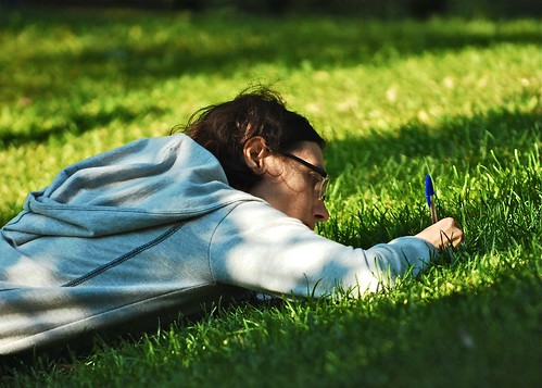 Writing in the grass | by pedrosimoes7