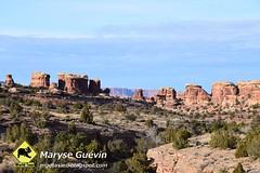 Canyonlands The   Needles USA