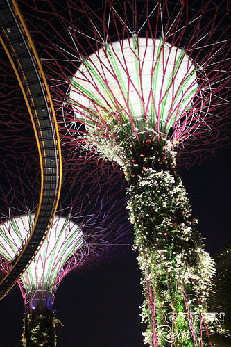 160910f OCBC Skywalk Gardens by the Bay _015