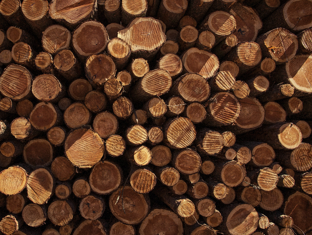 Log Wallpaper With The Texture Of Logs ~ Stacked wood logs texture flickr