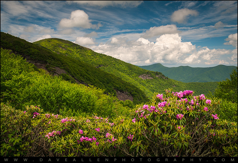 Craggy Gardens North Carolina Garden Ftempo