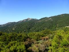 Punta di I Cavalletti à gauche sur sa crête