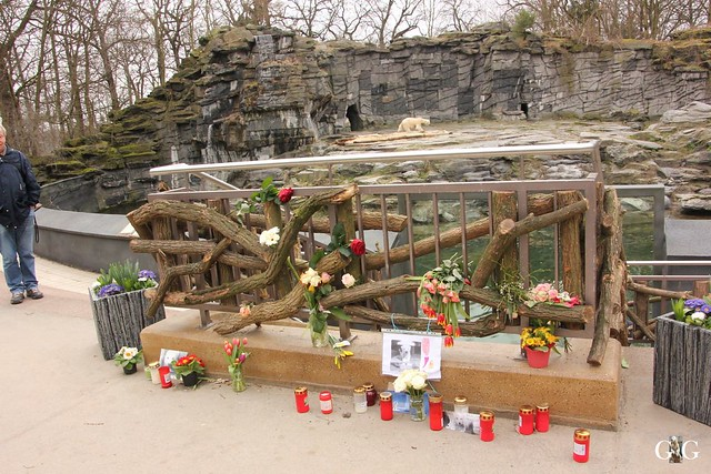 Tierpark Friedrichsfelde 19.03.20176