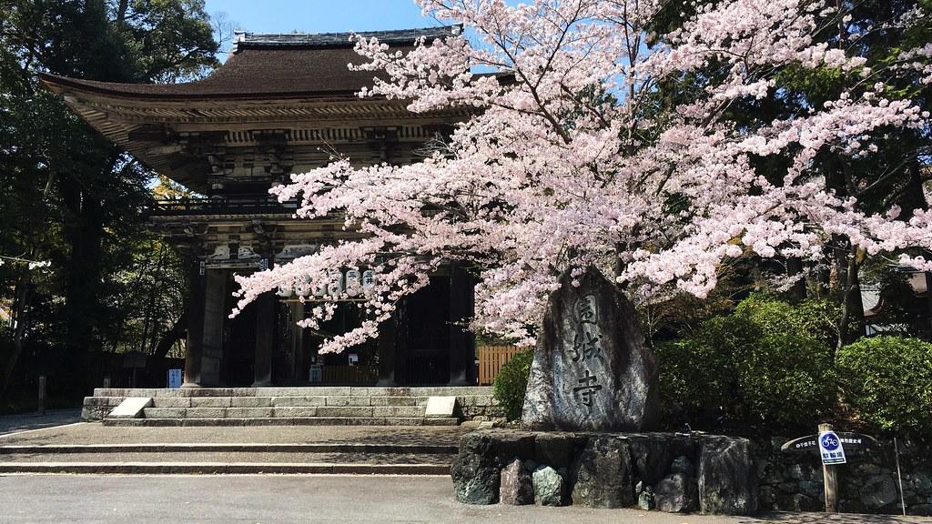 三井寺:Mii-dera (20170413)