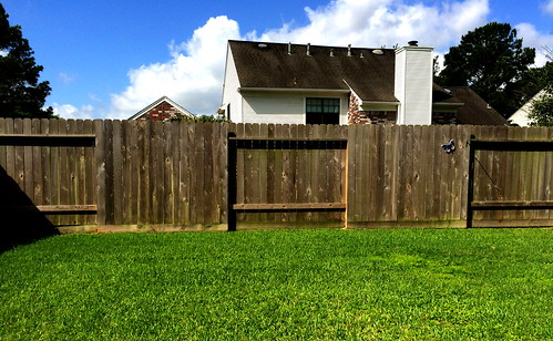 IMG_0025a CF14 Fences | by ArturoYee