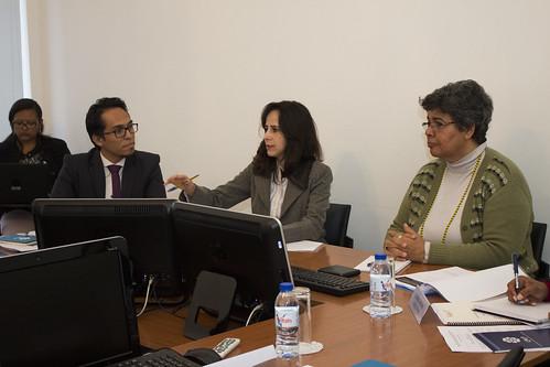 I Encontro dos Peritos em Estatísticas da Educação na CPLP