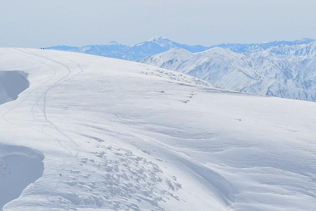 守門岳から望む日光白根山と燧ヶ岳