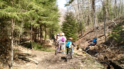 April 12 2017 Seneca Creek Trail WV (5)