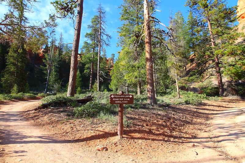 IMG_9882 Peekaboo Trail