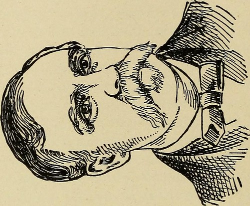 "Image from page 95 of ""Frauds and falsehoods of the Republican party .."" (1892) 