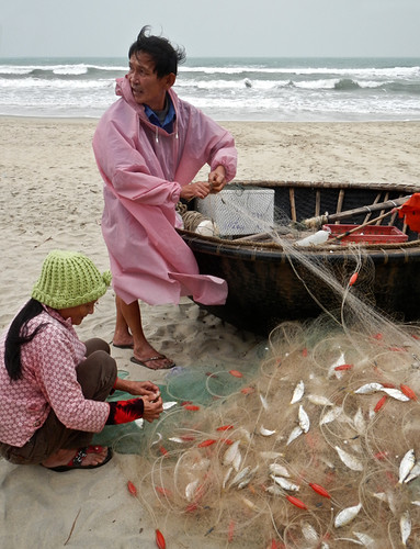 As soon as they bring in the fishing coracles the scales come out and an impromptu fish market starts up on the beach in Hoi An, Vietnam