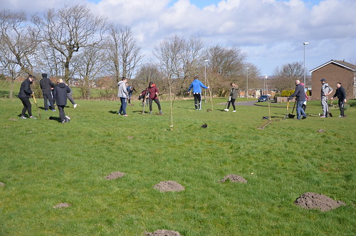 Kingsway Community Orchard planting session Mar 17 (41)
