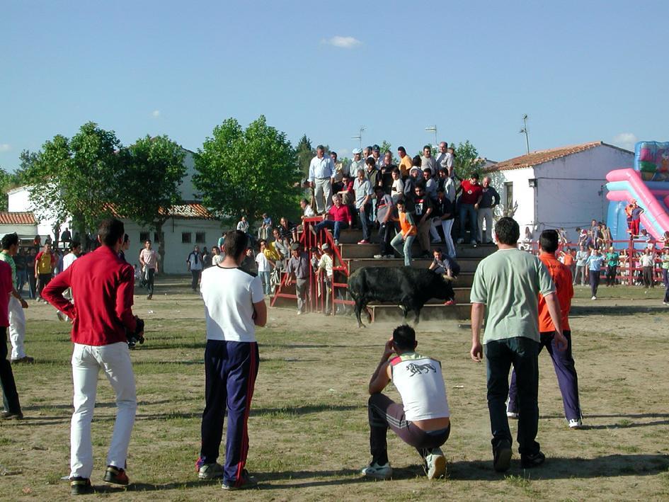 Fiestas de San José Obrero - Rincón del Obispo