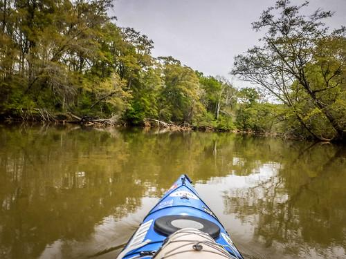 Saluda River at Pelzer-81