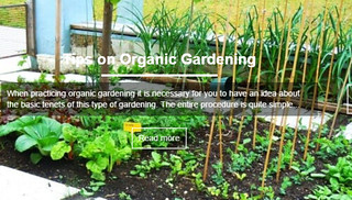 How to start organic gardening | by mohammadnelson