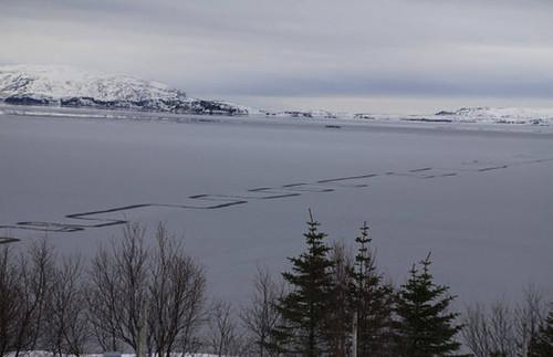 iceland-Lake-Thingvallavatn-lines-866806
