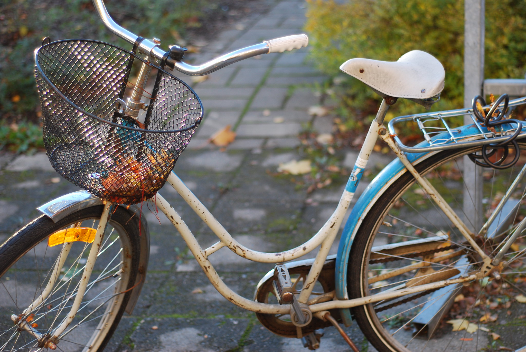 cykel-iv_10190905185_o