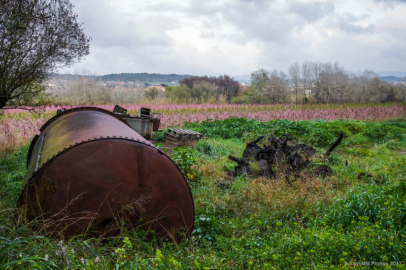 Objetos abandonados junto a la Sénia de Juanito Solàrio