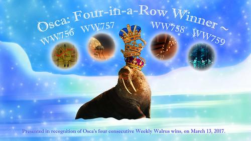 WW759 Osca 4-Win Certificate