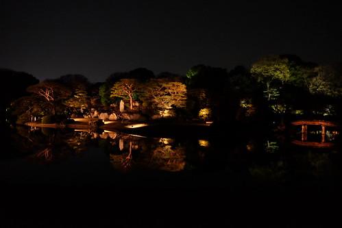 大名庭園ライトアップ 02  水に映る中の島