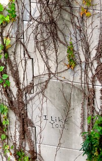 Austin Graffiti | by Bonnie Feaster Chapa Photographic Art