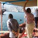 Dolphin watching - Musandam Oman - During 16 days friends holiday 2013