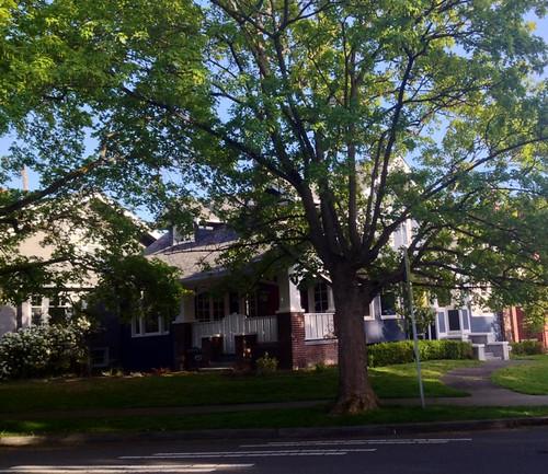 John Muir Elementary School Neighborhood Home Example: Mou ...