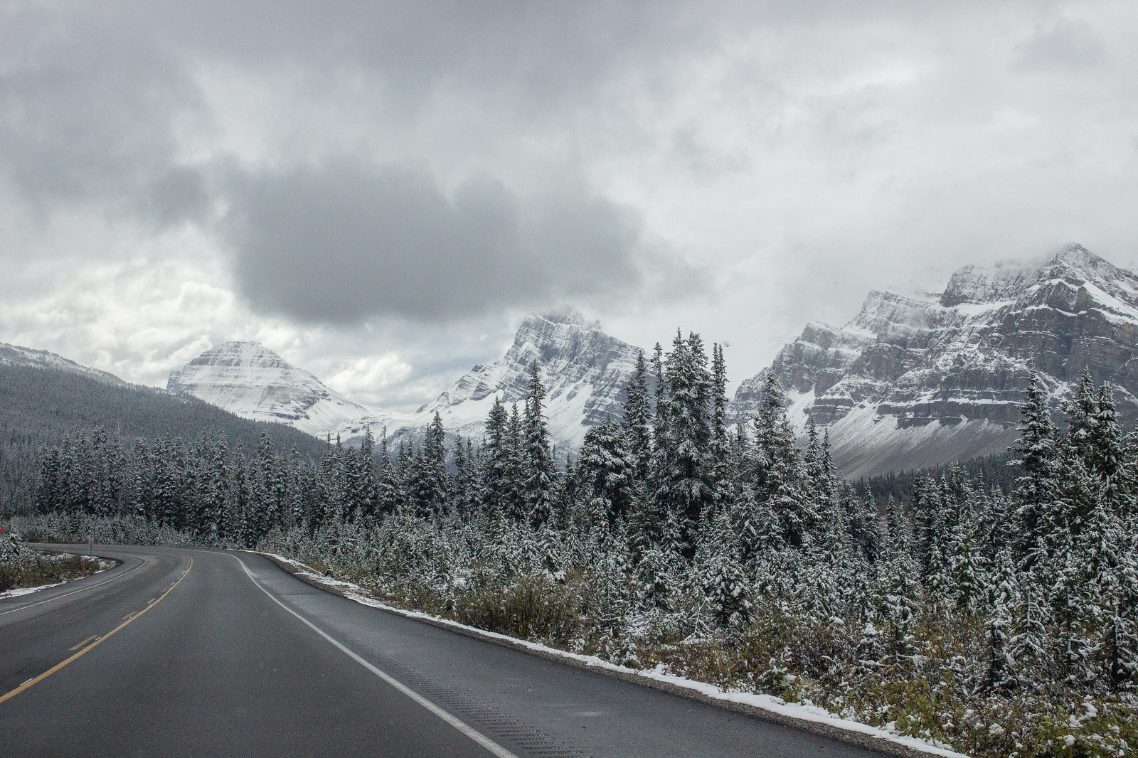 Snow on the Icefields Parkway