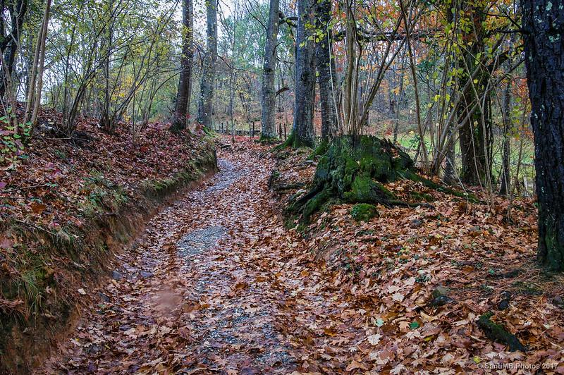 Camino a Iñarbil