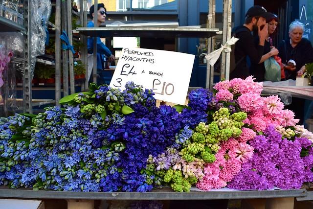 Hyacinths at Columbia Road Flower Market | www.rachelphipps.com @rachelphipps