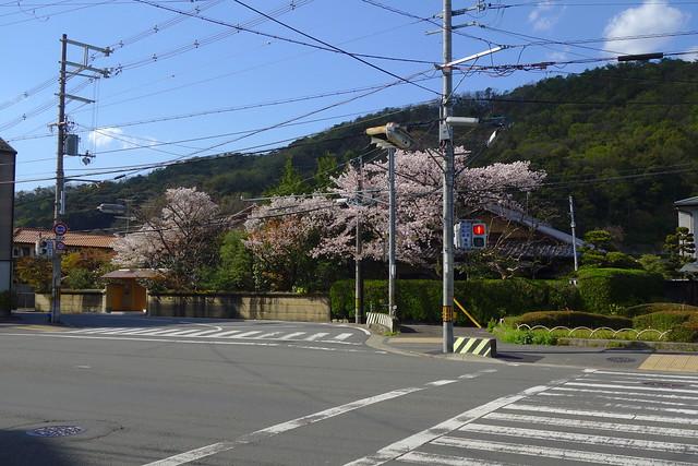 2017/04 松ヶ崎北山通旧道別れ