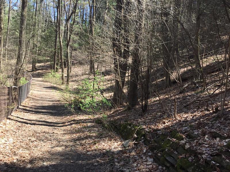 Watkins Glen State Park - April 23