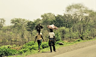 Ladies carrying firewood, Centre region, Cameroon | by SarahTz