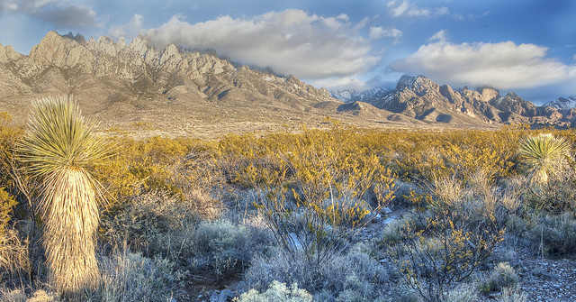 photo of Organ Mountains Desert Peak National Monument