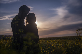 Love is a canola field. | by RyanSMcKee