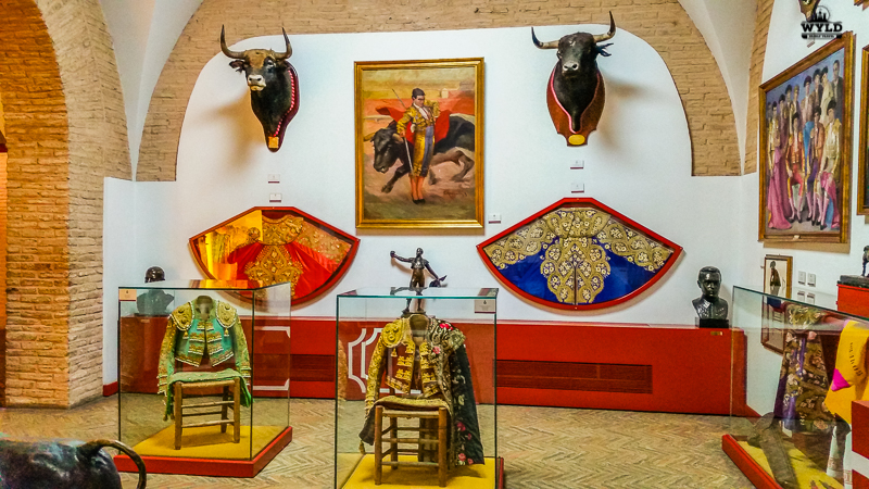 A room of uniforms that were worn by famous matadors in the Seville Bullring museum. There is a red cape with gold embroidery and a navy blue with gold embroidery. There are also preserved bulls heads from famous bull's that were saved from the ring