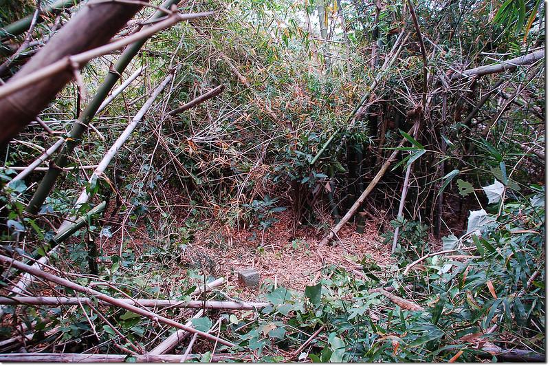 張十六山山字森林三角點(Elev. 210 m)