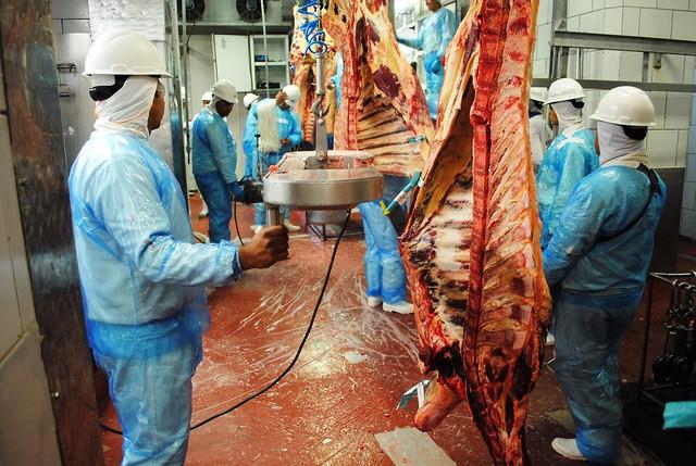 Governo Temer vai tentar minimizar os efeitos da Carne Fraca no exterior, carne bovina - operação carne fraca