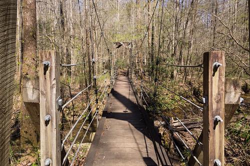 Bouncy supension bridge