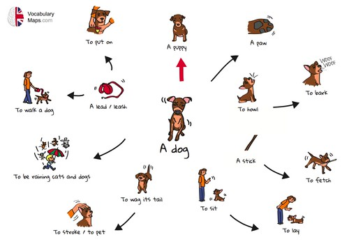 Dog vocabulary map