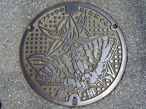 Tanigumi Gifu, manhole cover (岐阜県谷汲村のマンホール)
