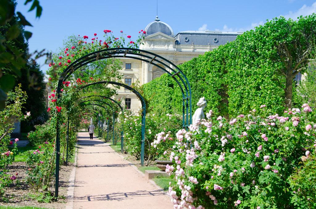Au Jardin des Plantes