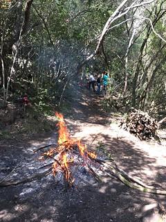 Brûlage des coupes sur une carbunara de la montée de Petra Stretta