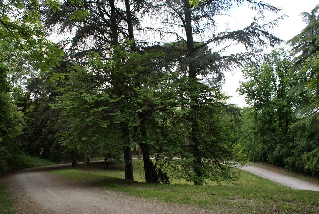 Dans le parc sous l'église San Michele e Bosco à Bologne.
