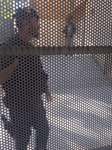 Agentes de la UCO de la Guardia Civil esta mañana en el registro llevado a cabo en el domicilio social de Saerco en Madrid