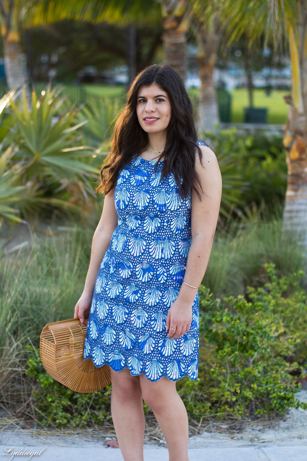 Lilly Pulitzer eyelet lace shell dress, bamboo bag, mules-7.jpg