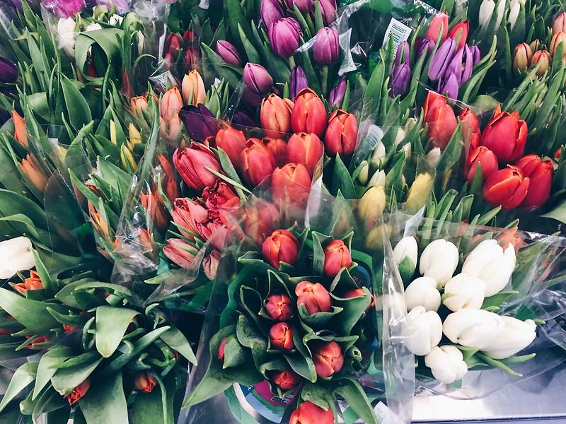 SpringTulips, kevät, tulppaani, tulppaanit, colors, värit, beautiful, kaunis, kukat, kukka, flowers