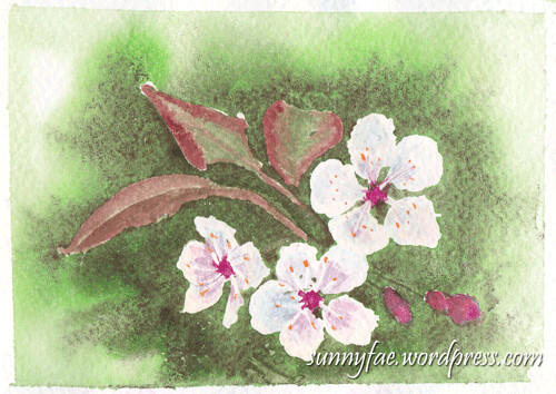 watercolour blossoms 2