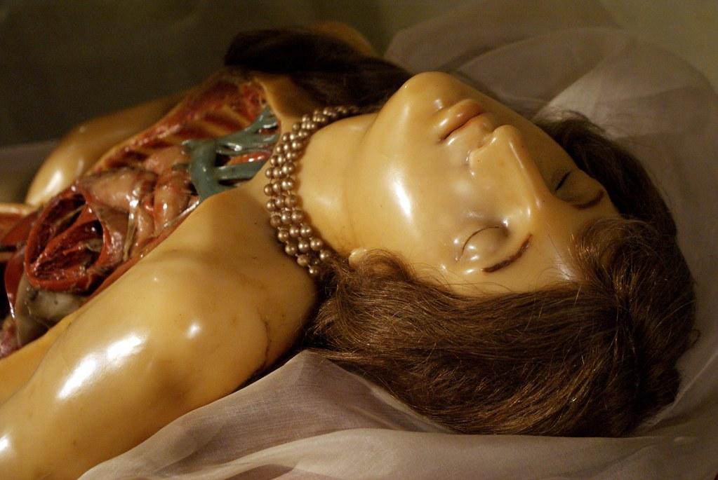Anatomie féminine lascive avec un collier dans la collection du musée d'anatomie de Bologne. Curieux.