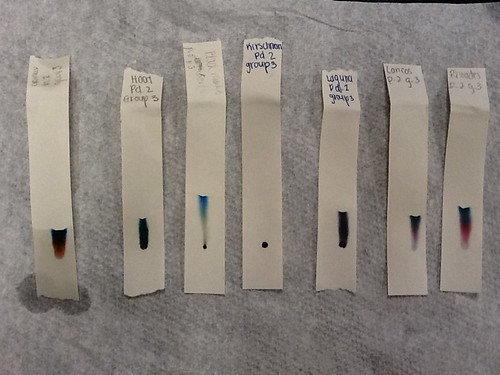 p2g3 Chromatography of the pens